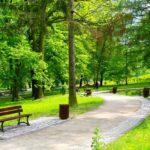 В Немчиновке благоустроят парк до конца года