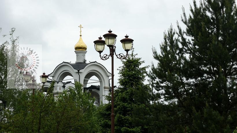 Выставку «Врачеватели душ и телес» в Одинцовском округе открыл губернатор Подмосковья